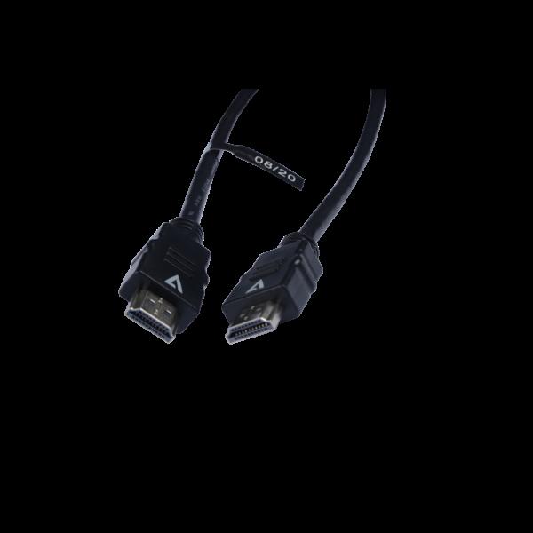 V7 Cable negro de vídeo con conector HDMI macho a HDMI macho 3m 10ft