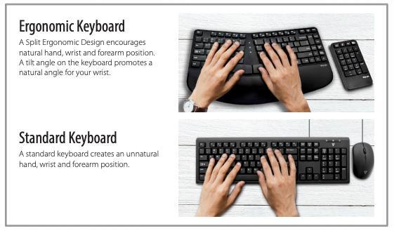 Ergo Comparison Graphic